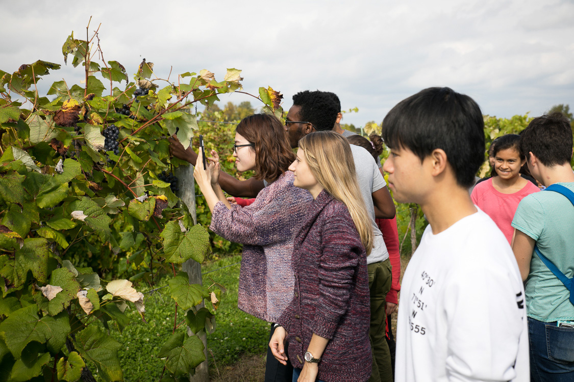 Molecular Diagnostics class visits NYS Agricultural Station in Geneva