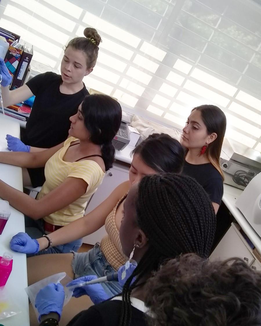 Labwork in Curacavi